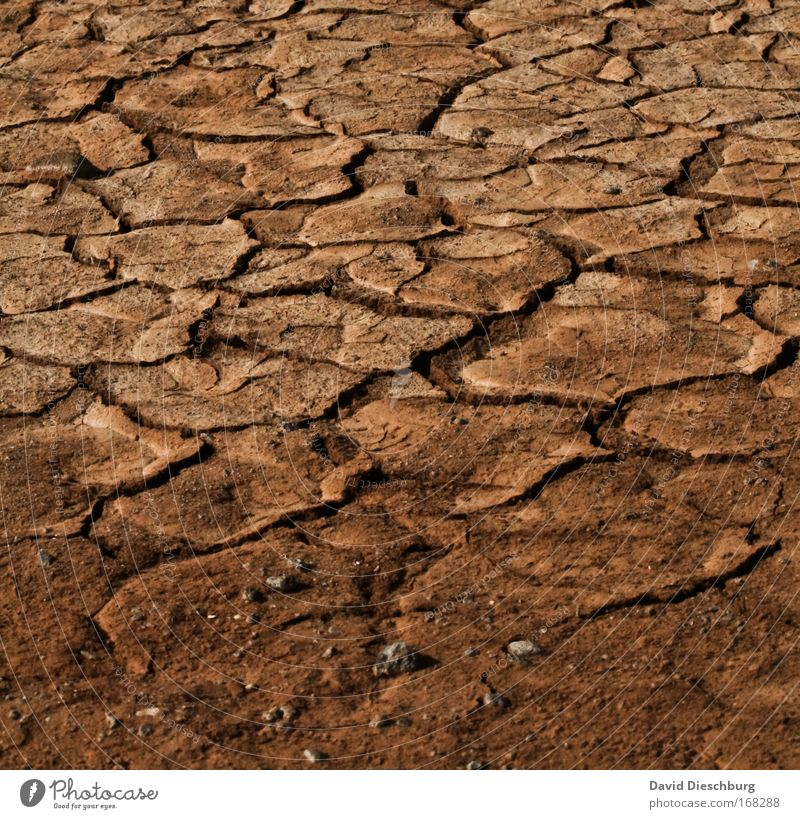 Nature Landscape Environment Sand Brown Background picture Earth Elements Broken Ground Gloomy Desert Dry Crack & Rip & Tear Shriveled Climate change