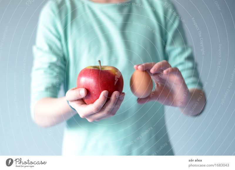 Compare apple with egg Food Apple Egg Economy Trade Services Financial Industry Human being Feminine Girl Upper body 1 8 - 13 years Child Infancy To hold on