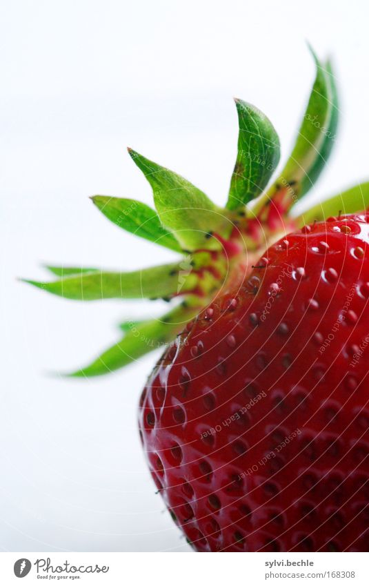 White Green Red Life Healthy Fruit Fresh Sweet Delicious Appetite Seed Exotic Strawberry Juicy Section of image Fruit flesh
