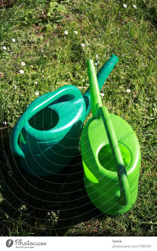 Green watering cans Colour photo Exterior shot Garden Watering can Plastic Lust Grass surface Meadow Day