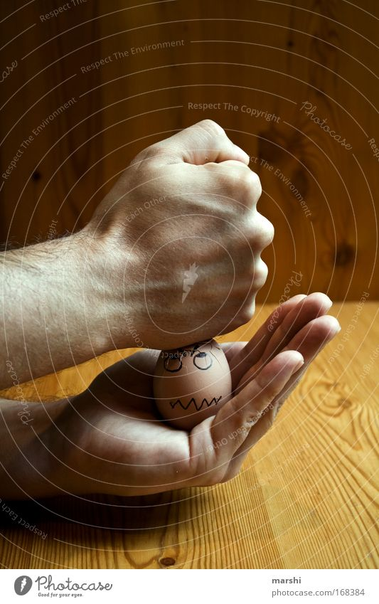 Hand Face Nutrition Emotions Wood Brown Power Fear Funny Food Fingers Table Broken Threat Appetite Egg
