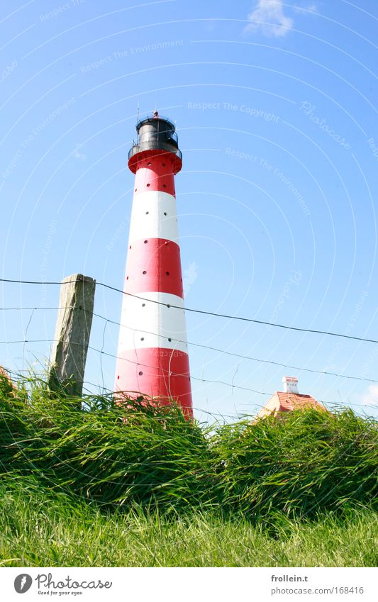 Westerhever Lighthouse Colour photo Exterior shot Day Worm's-eye view Vacation & Travel Tourism Trip Sightseeing Nature Landscape Sky Cloudless sky Summer