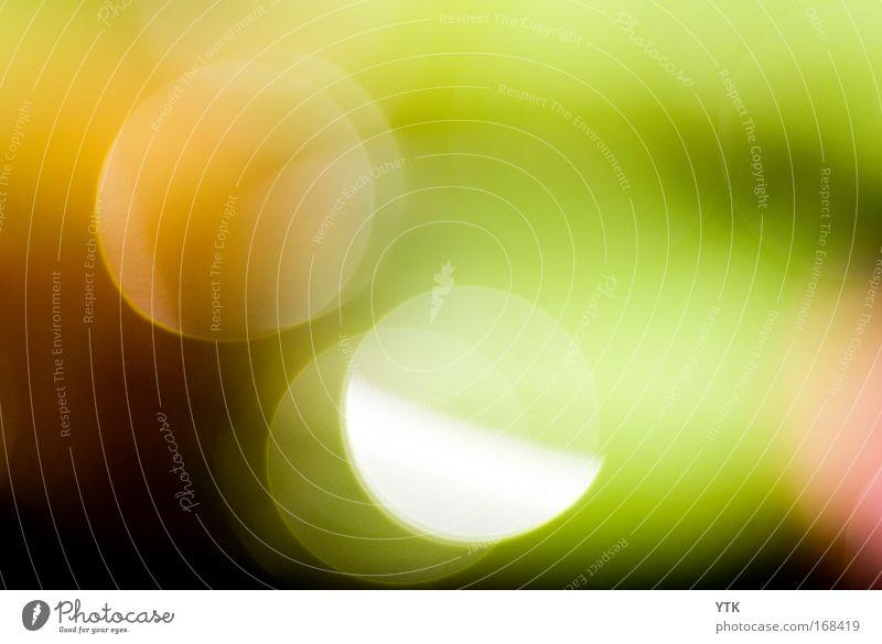 Sun Green Red Joy Colour Air Moody Glittering Design Esthetic Round Fantastic Warm-heartedness Illuminate Blur