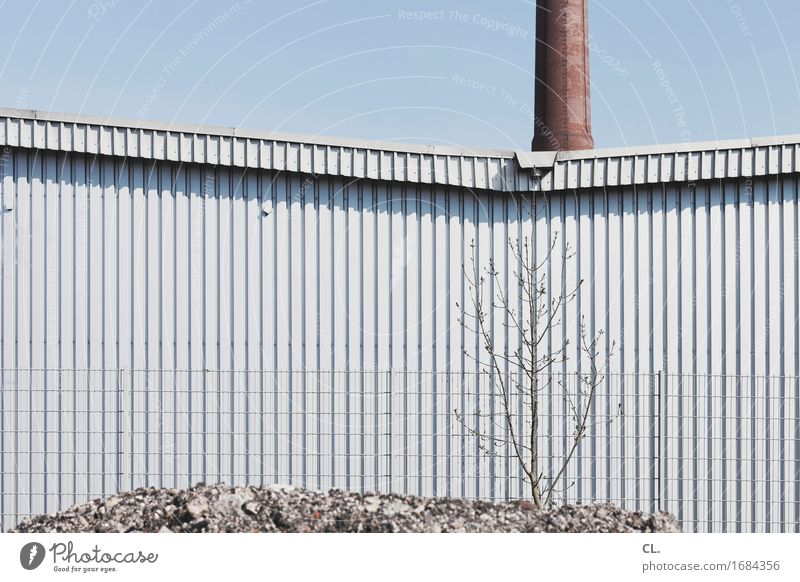 Sky Tree Wall (building) Building Wall (barrier) Gloomy Industry Construction site Fence Factory Cloudless sky Economy Chimney Industrial plant SME
