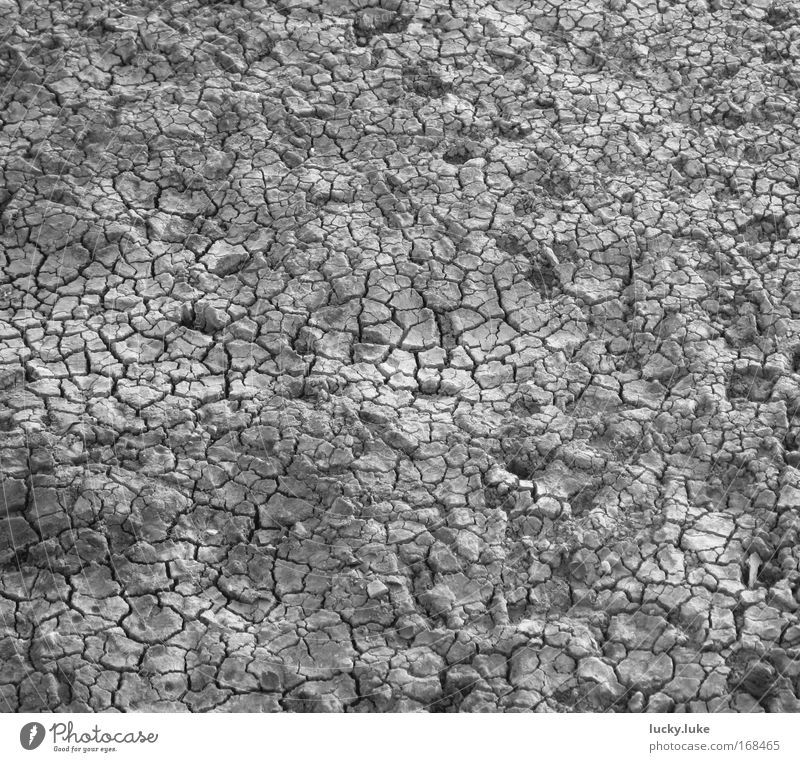 Nature Gray Lake Earth Dry Thirst Crust