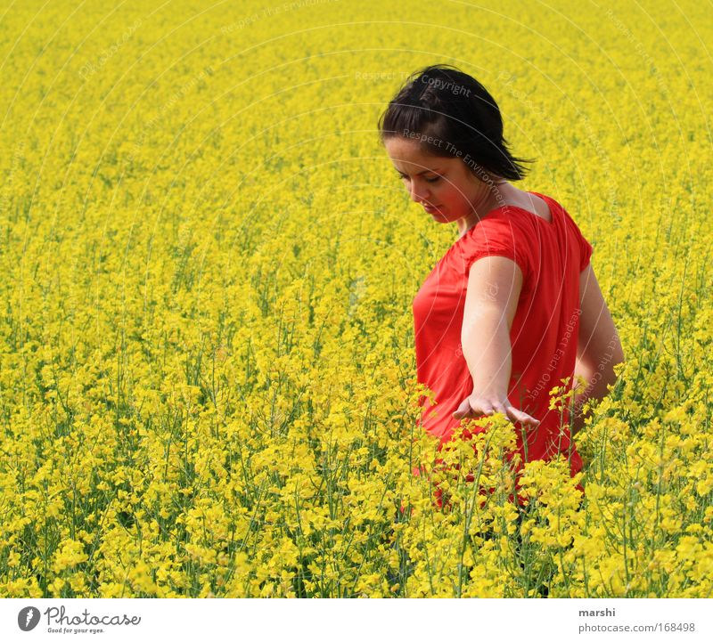 Human being Woman Nature Vacation & Travel Plant Beautiful Summer Red Hand Flower Landscape Yellow Adults Meadow Emotions Feminine