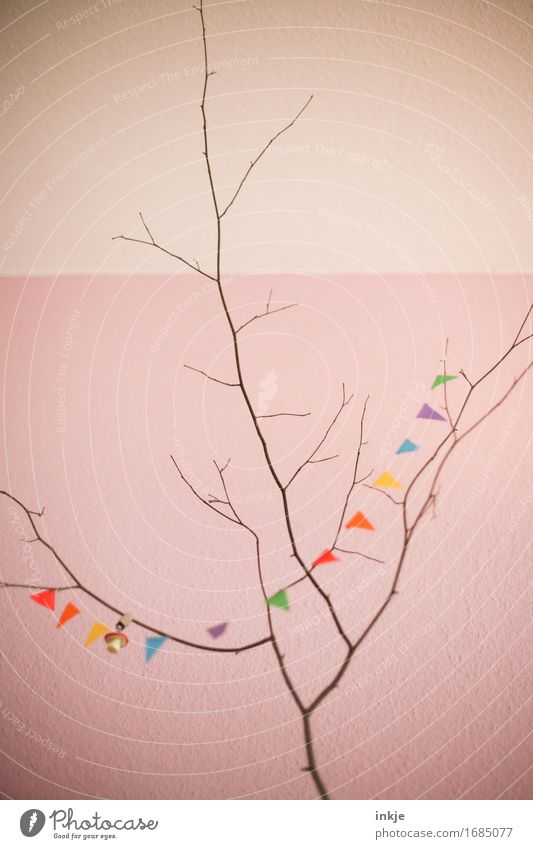 Half Decorated Lifestyle Style Leisure and hobbies Living or residing Decoration Party Feasts & Celebrations Birthday Autumn Branch Twig Deserted Wall (barrier)