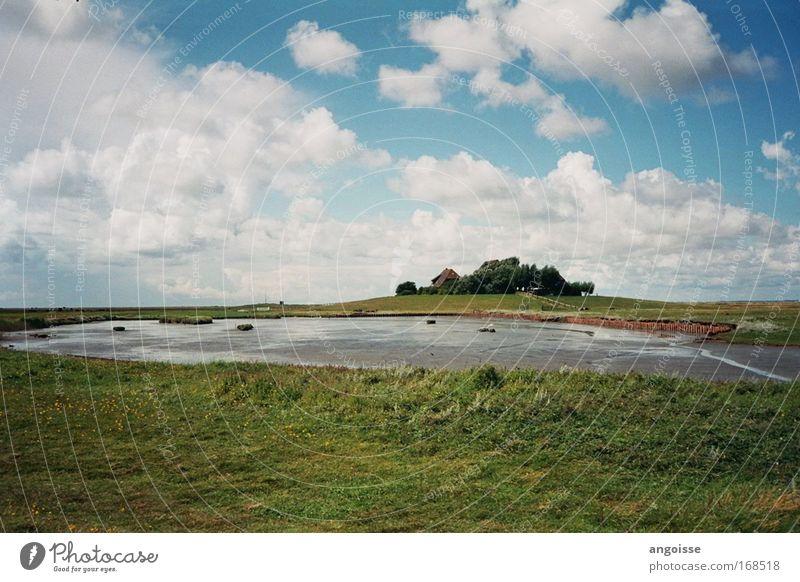 Water Sky White Green Blue Summer Vacation & Travel Calm Grass Freedom Gray Landscape Field Coast Wet