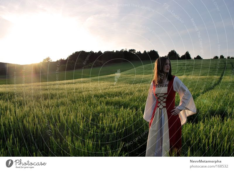 Queen Gwenivere of Camelot Colour photo Twilight Field Dress Wait Sunset Fantasy literature Aristocracy Medieval times King