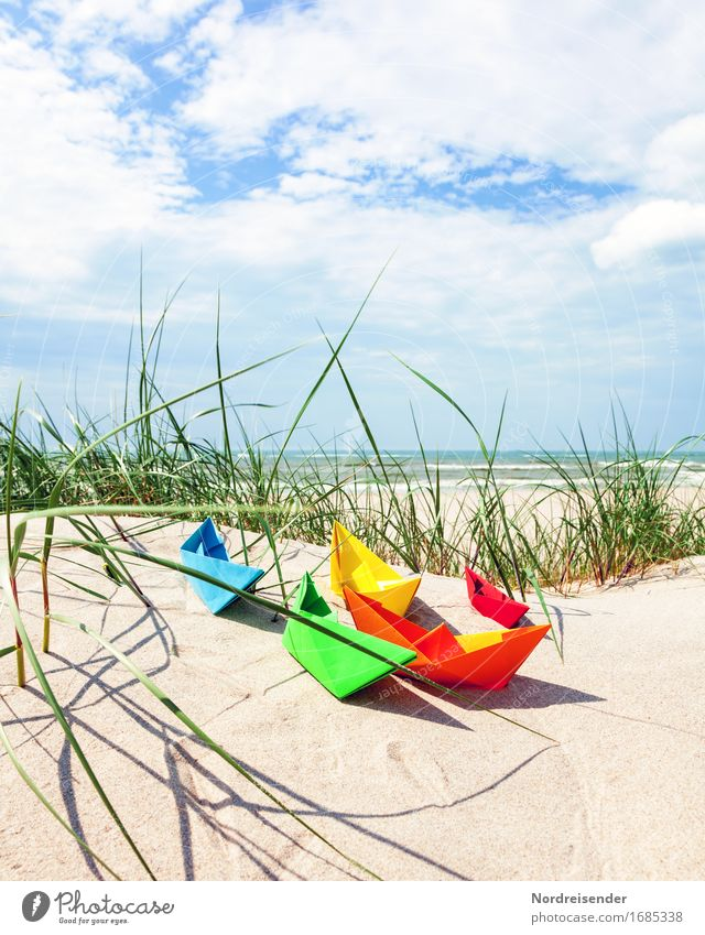 Nature Vacation & Travel Summer Sun Ocean Landscape Beach Grass Tourism Leisure and hobbies Joie de vivre (Vitality) Beautiful weather Paper Baltic Sea