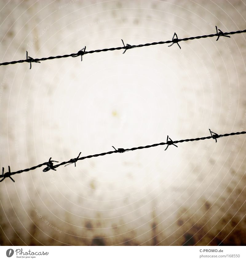 barbed wire Colour photo Exterior shot Deserted Copy Space bottom Copy Space middle Silhouette Deep depth of field Wall (barrier) Wall (building) Stone Steel
