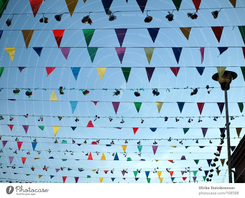 Many colorful pennants and bouquets as decoration in the streets of Pula Joy Decoration Event Feasts & Celebrations Fairs & Carnivals Fishing village