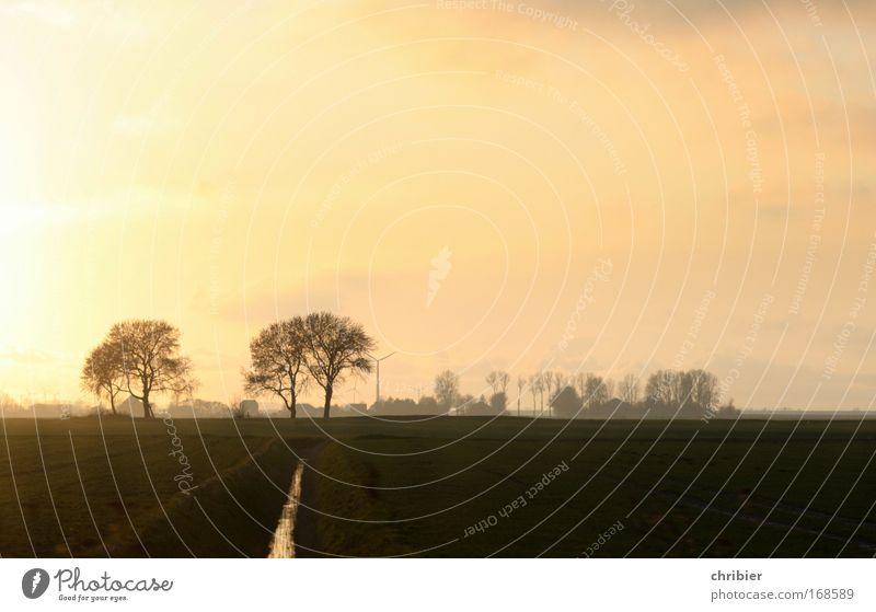 Sky Calm Relaxation Meadow Dream Landscape Coast Field Free Horizon Infinity Sunrise To enjoy