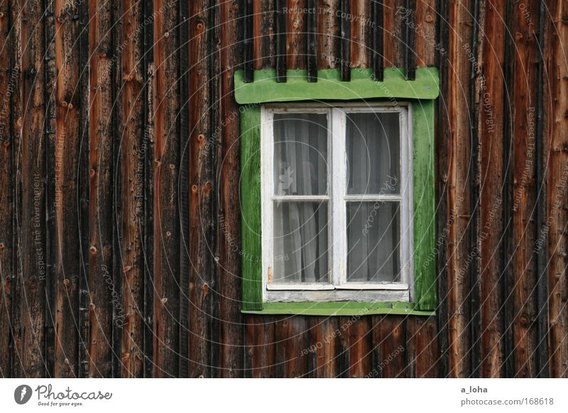 Old Green Summer Loneliness House (Residential Structure) Calm Relaxation Window Wall (building) Wood Wall (barrier) Line Brown Glass Authentic