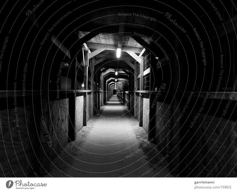 Architecture Tunnel Night