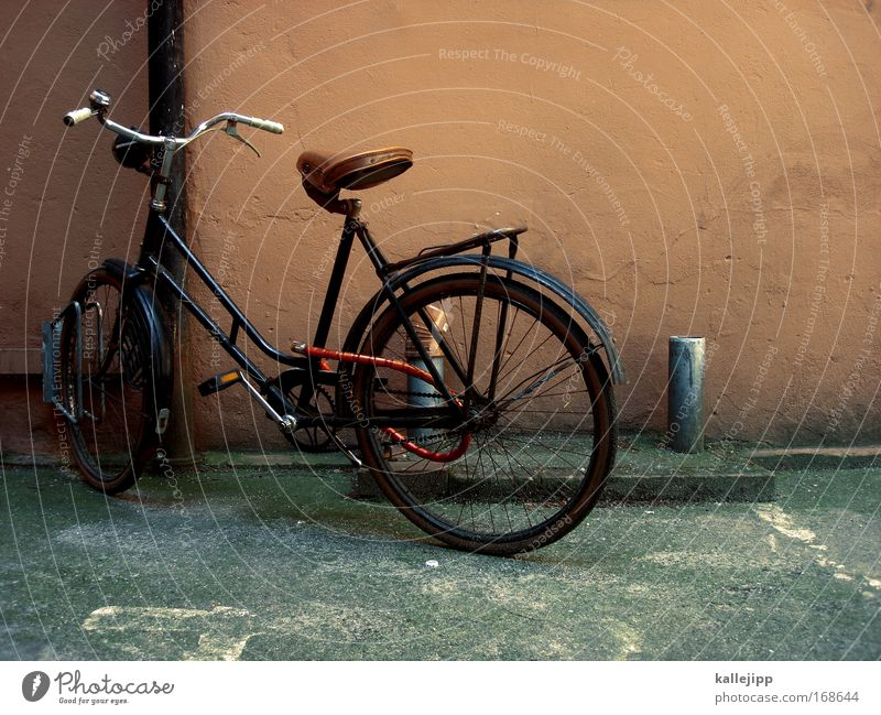 House (Residential Structure) Wall (building) Wall (barrier) Style Brown Bicycle Leisure and hobbies Elegant Design Transport Authentic Lifestyle Cool (slang)
