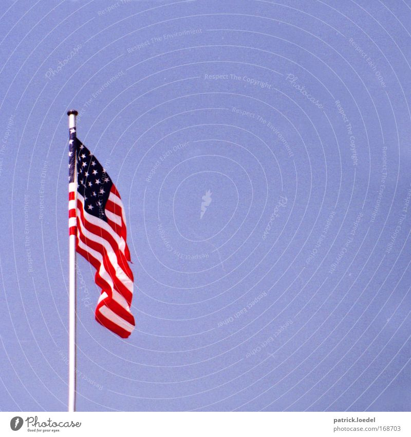 Sky Might USA Flag Americas Historic Hang American Flag Pride Politics and state Blow Arrogant Judder Cloudless sky World power Independence Day