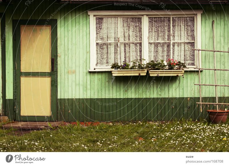 Nature Old Green Summer Environment Window Meadow Wall (building) Wall (barrier) Garden Door Facade Leisure and hobbies Authentic Transience Simple