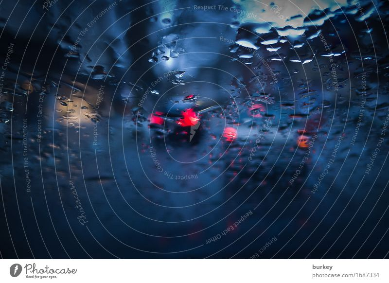 brakeman Rush hour Motoring Street Observe Wait Cold Wet Blue Red Dream Sadness Concern Grief Fear of the future Frustration Stress Loneliness Crisis Stagnating