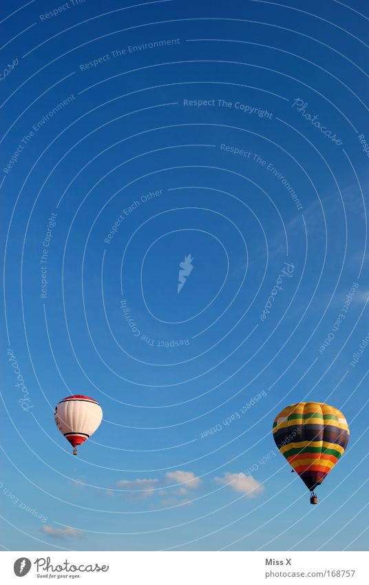Summer Freedom Air Flying Trip Aviation Adventure Driving Leisure and hobbies Hot Air Balloon Beautiful weather Blue sky Balloon flight