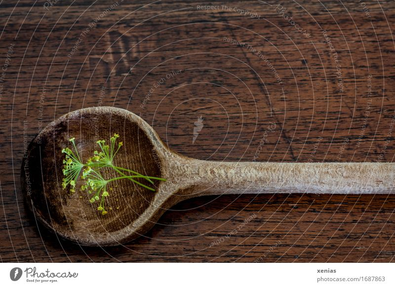 Cooking spoon with dill flowers lies on a wooden base Wooden spoon Dill blossom Herbs and spices Eating Spoon Kitchen Brown Yellow Green Wood grain