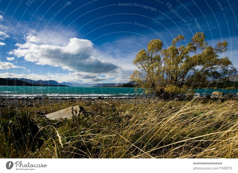 Nature Water Sky Tree Plant Vacation & Travel Clouds Autumn Grass Landscape Coast Wind Environment Horizon Tourism Alps