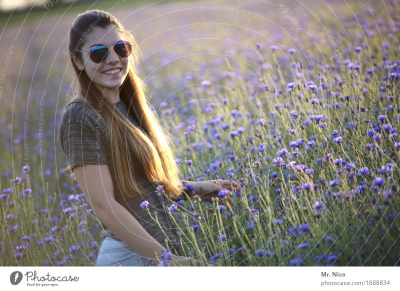 sunny side of life Feminine Environment Nature Landscape Summer Grass Wild plant Field Sunglasses Brunette Long-haired Beautiful Warmth Beautiful weather