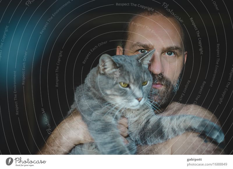 Man with cat on arm Human being Masculine Adults Facial hair 1 Animal Pet Cat Carrying Cuddly naturally Cute Wild Soft Blue Brown Gray Emotions Agreed