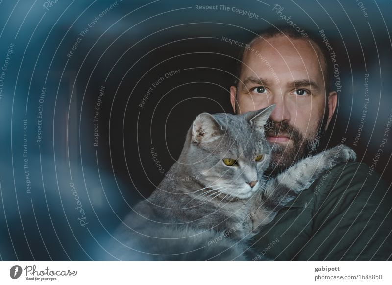 Cat Human being Man Blue Animal Adults Life Happy Gray Couple Together Friendship Flat (apartment) Masculine Living or residing Contentment