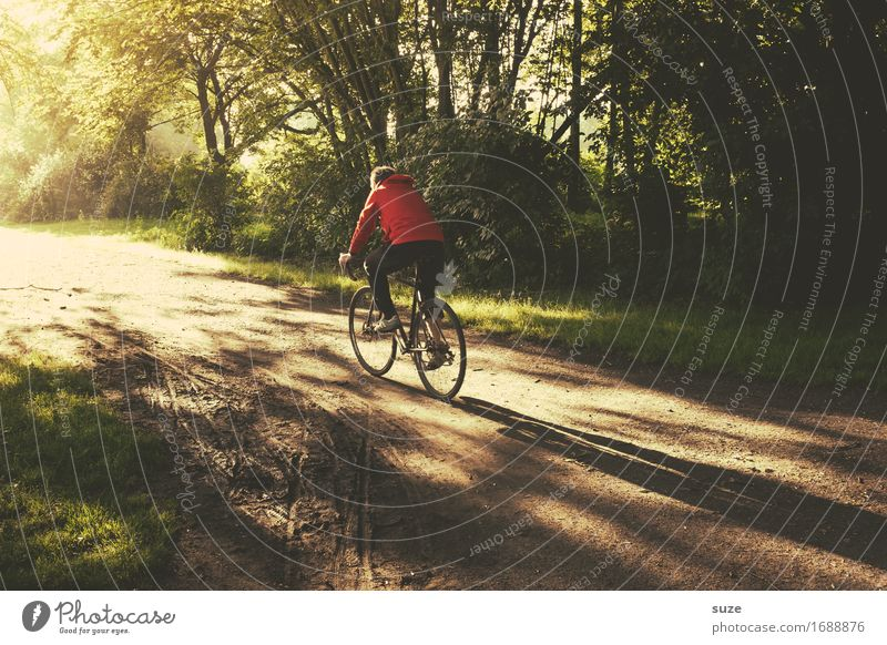 straight ahead Lifestyle Leisure and hobbies Trip Cycling tour Summer Bicycle Human being Masculine Young man Youth (Young adults) Adults Environment Nature
