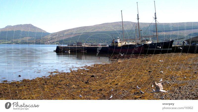 The harbour Lake Scotland Watercraft Reflection Europe Inveraray Harbour seagull Americas Electricity pylon Sail Mountain