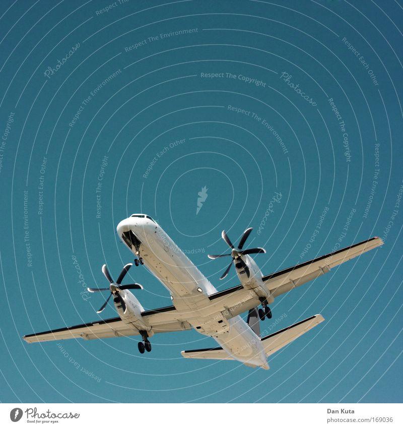 Blue White Vacation & Travel Summer Joy Dream Bright Pink Flying Design Transport Airplane Aviation Communicate Observe Curiosity