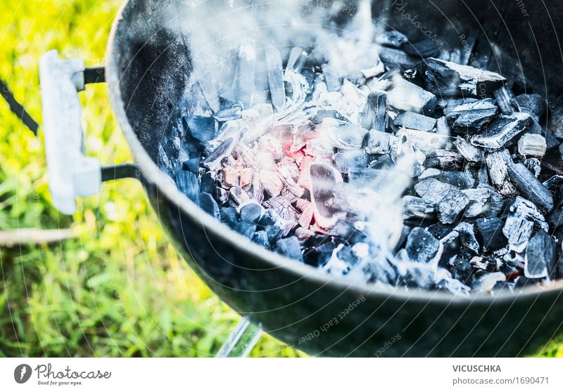 Hot coals with smoke in grill Lifestyle Joy Leisure and hobbies Summer Garden Party Beautiful weather Warmth Grass Park Meadow Barbecue (apparatus)