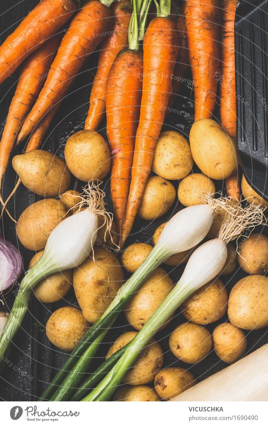 Nature Summer Healthy Eating Life Autumn Style Garden Food Nutrition Cooking & Baking Vegetable Organic produce Harvest Vegetarian diet Vegan diet Slow food