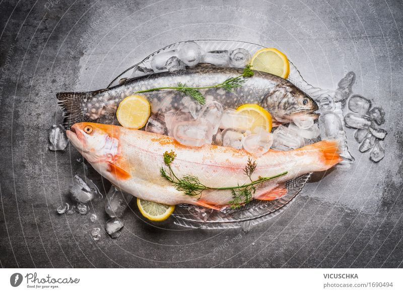 Whole trout on a glass plate with ice cubes Food Fish Herbs and spices Nutrition Lunch Dinner Banquet Organic produce Vegetarian diet Diet Plate Style Design