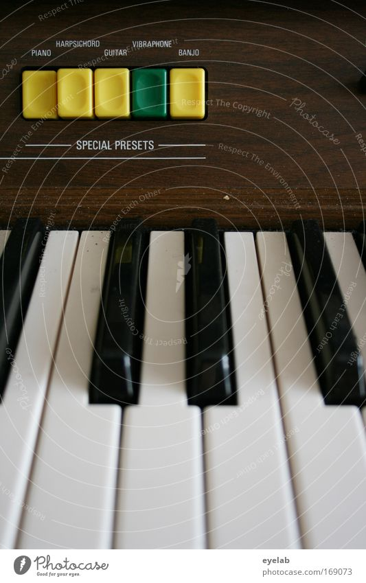 Joy Wood Moody Leisure and hobbies Music Characters Technology Plastic Concert Stage Keyboard Switch Piano Musician Practice