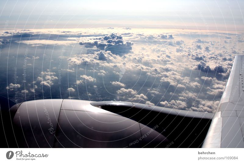 who wants to go? Colour photo Exterior shot Sunlight Bird's-eye view Beautiful Vacation & Travel Tourism Far-off places Freedom Sky Clouds Airplane