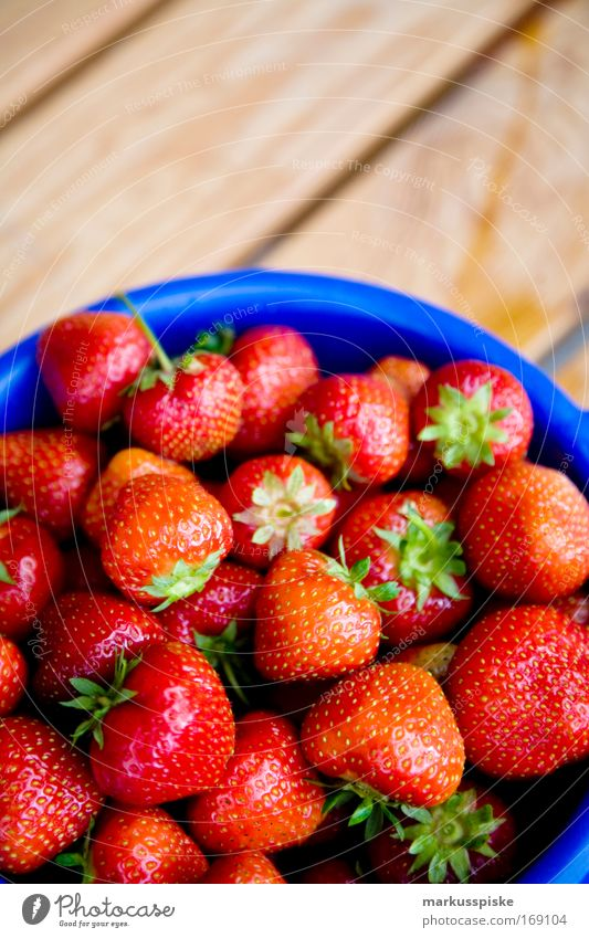freshly picked strawberries Colour photo Exterior shot Copy Space top Day Deep depth of field Bird's-eye view Food Fruit Strawberry Harvest Pick salubriously