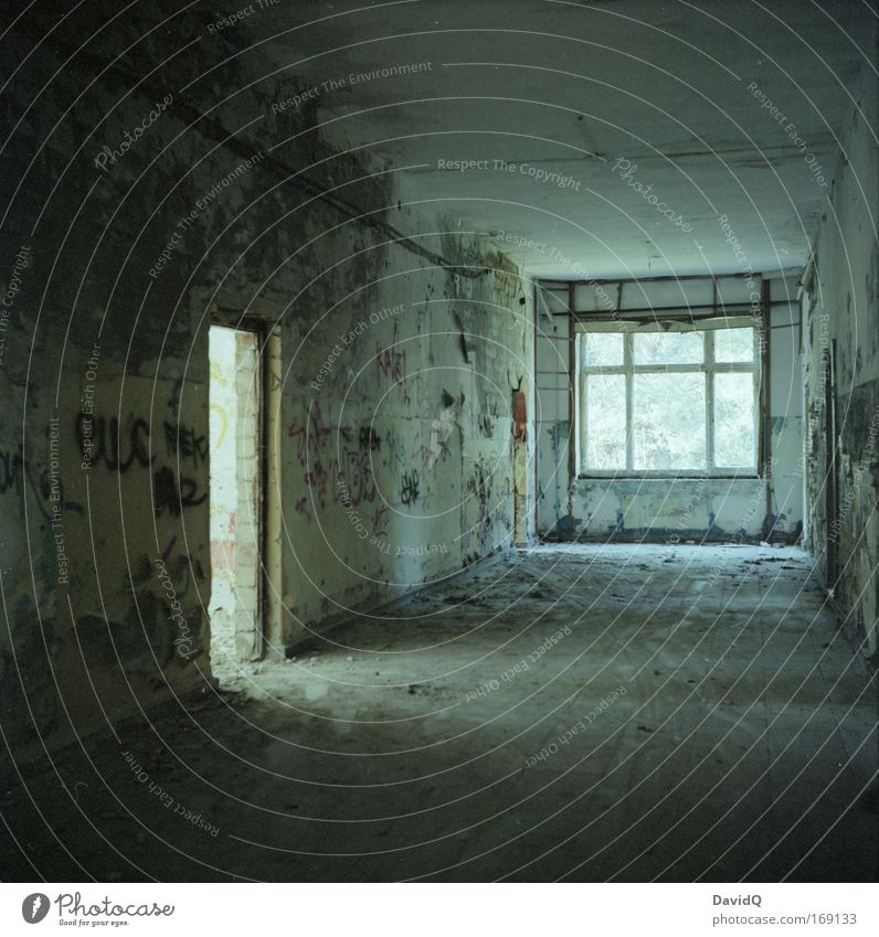 Calm House (Residential Structure) Wall (building) Window Wall (barrier) Building Door Broken Transience Decline Past Manmade structures Ruin Light
