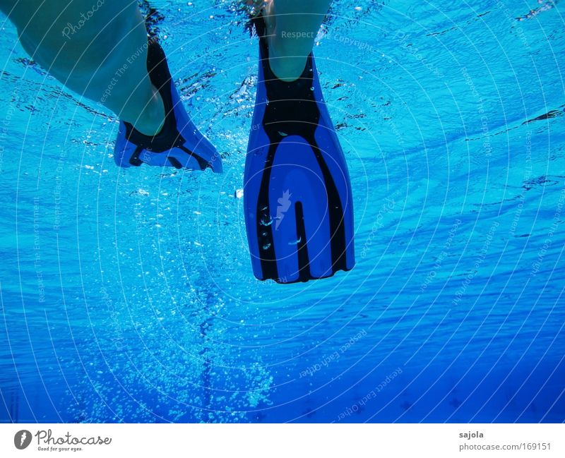 with fins in pool Colour photo Subdued colour Underwater photo Copy Space bottom Swimming & Bathing Summer Sports Aquatics Sportsperson Water wings