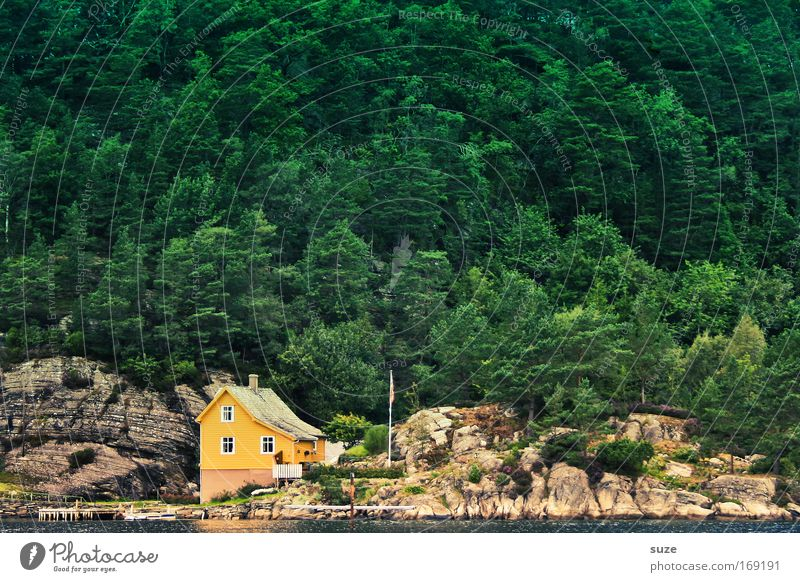 Nature Green Vacation & Travel Loneliness Landscape House (Residential Structure) Forest Yellow Environment Mountain Coast Flat (apartment) Hiking