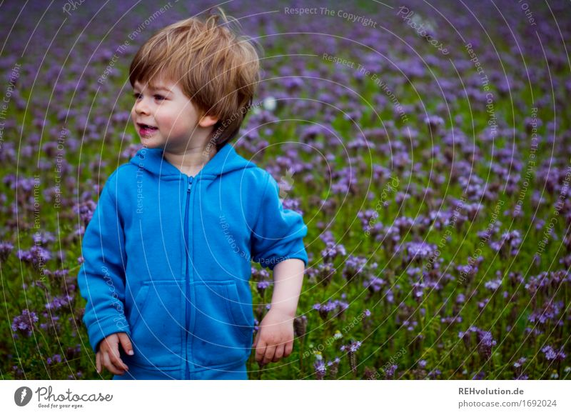 Human being Child Nature Blue Flower Joy Environment Meadow Boy (child) Happy Small Masculine Field Infancy Stand Happiness
