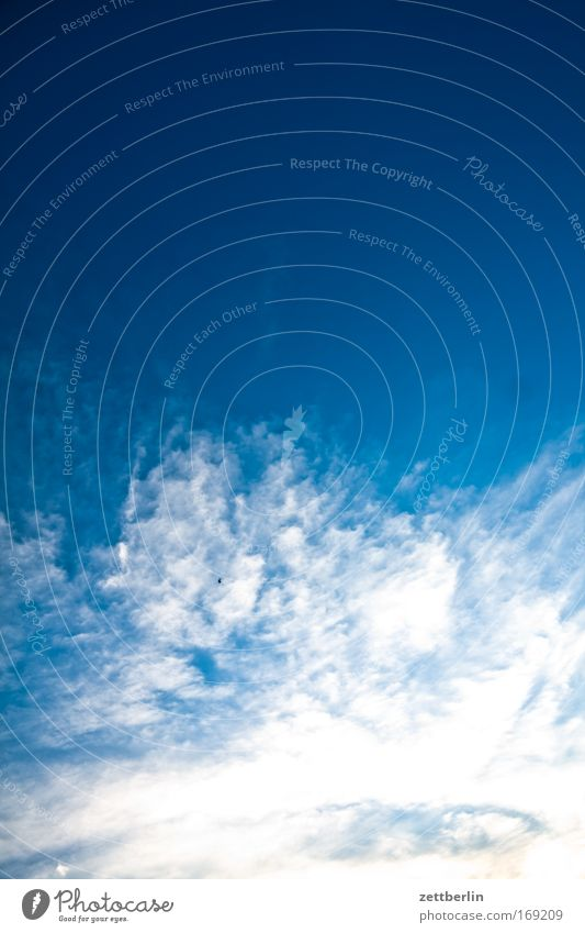 Sky Blue Clouds Universe Blue sky Sky blue Copy Space Meteorology Cirrus Meteorological service