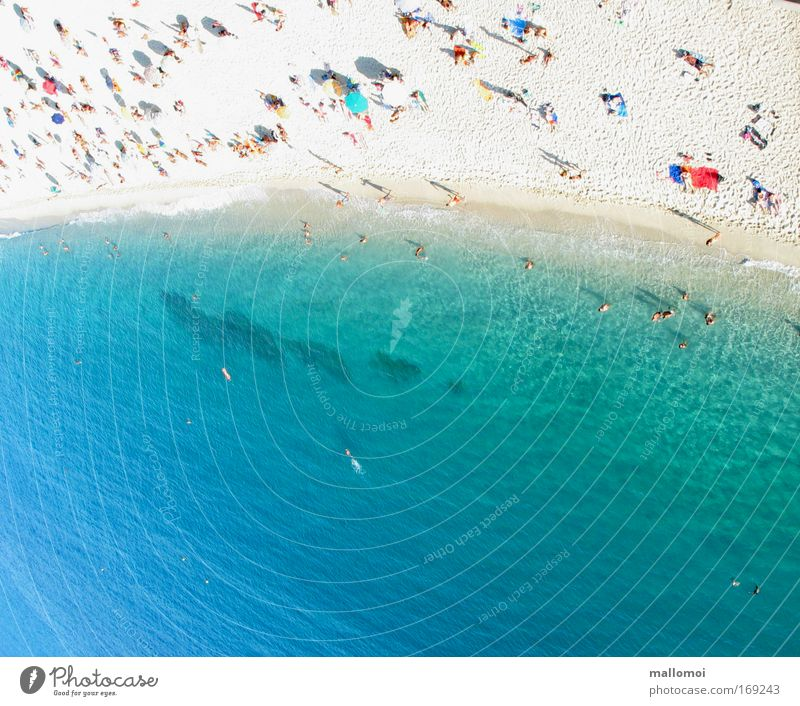 Ocean Blue Summer Beach Vacation & Travel Cold Relaxation Warmth Sand Coast Waves Wet Wellness Island Tourism Aerial photograph