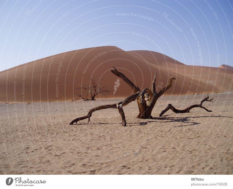 Sand Africa Desert Hot Dry Namibia