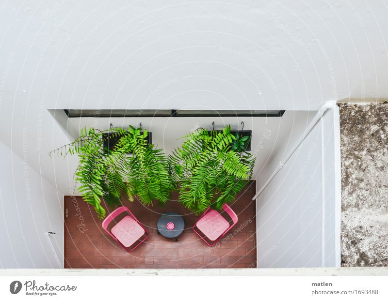 balkonies Town Wall (barrier) Wall (building) Facade Balcony Terrace Window Sharp-edged Green Red White Chair Table Artificial flowers Narrow Interior courtyard