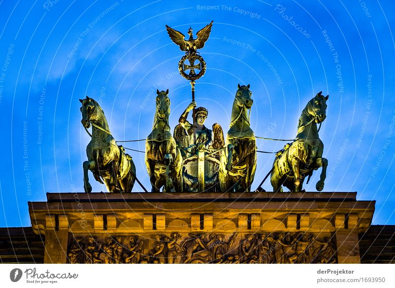 Quadriga in Berlin Forward portrait Worm's-eye view Deep depth of field Shadow Contrast Copy Space bottom Evening Twilight Night Artificial light Light