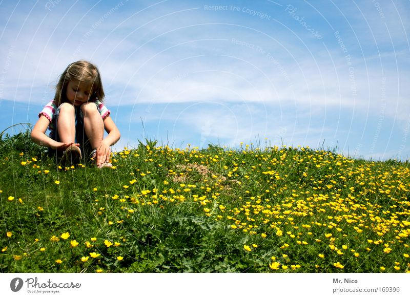 Nature Blue Green Girl Calm Relaxation Yellow Landscape Meadow Lanes & trails Legs Child Dream Time Contentment Leisure and hobbies