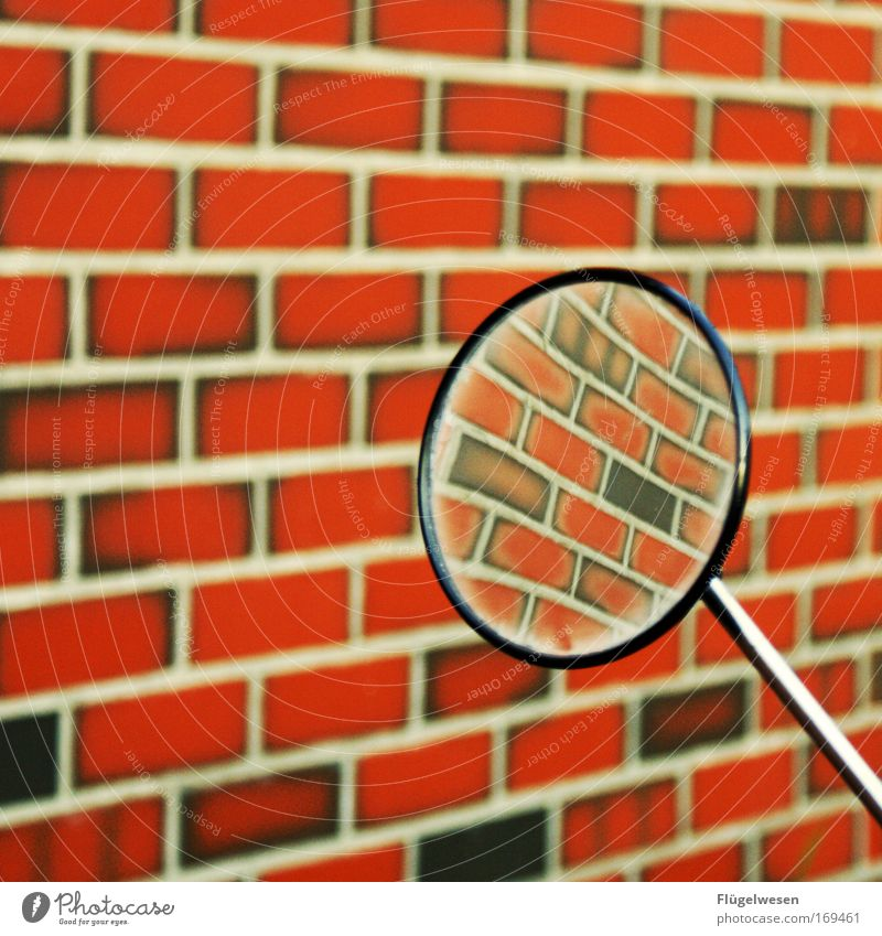 Emotions Wall (barrier) Transport Cool (slang) Driving Brick Mirror Motorcycle Self-confident Scooter Mortar Side mirror