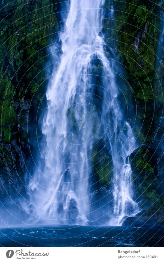 picture kitsch Colour photo Nature Plant Water Drops of water Wind Waterfall Relaxation Vacation & Travel